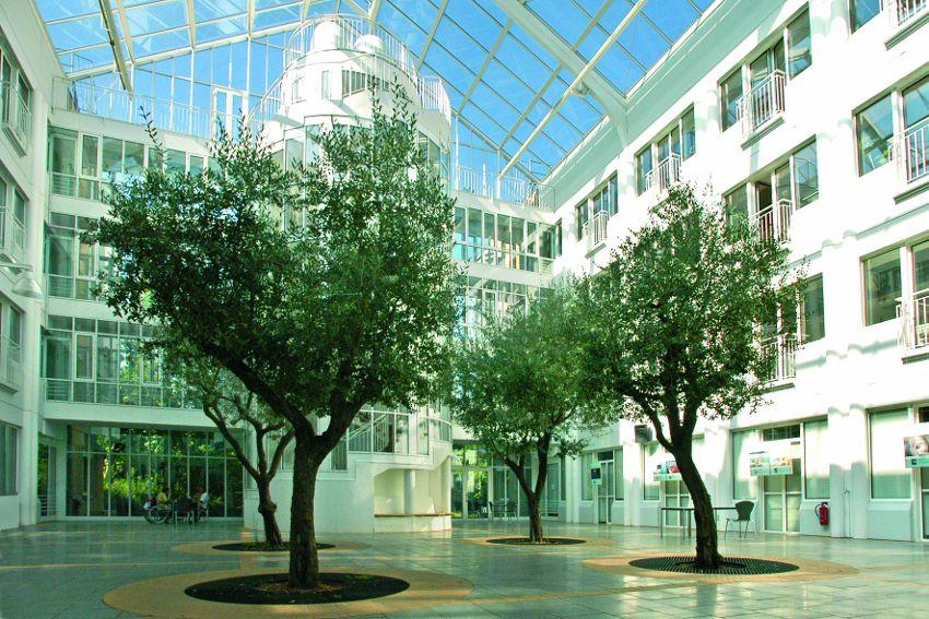 Zentrum für Gelenkmedizin und Wirbelsäulenchirurgie - HELIOS Klinikum Emil von Behring GmbH - Innenansicht