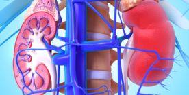 Niereninsuffizienz: Ursachen und Folgen